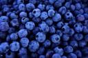 Superfood: Blueberries
