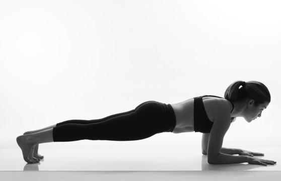 dolphin-plank-2014.jpg
